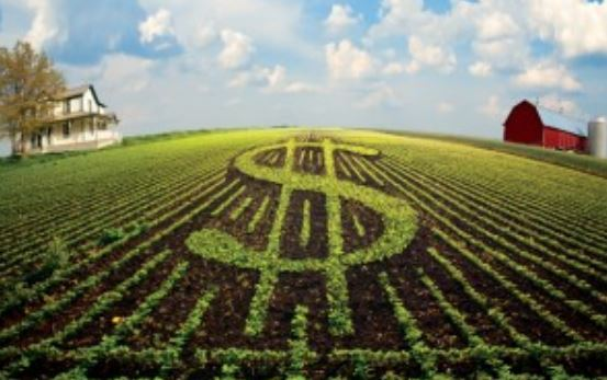 Free Farm Evaluation Services, Know the Current Market Value of your Farm
